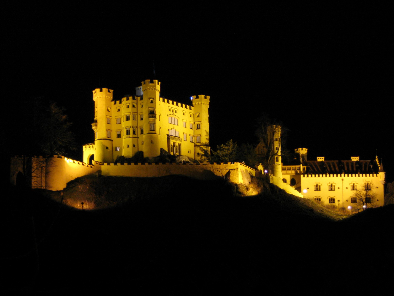 С догом в замке 12 фотография